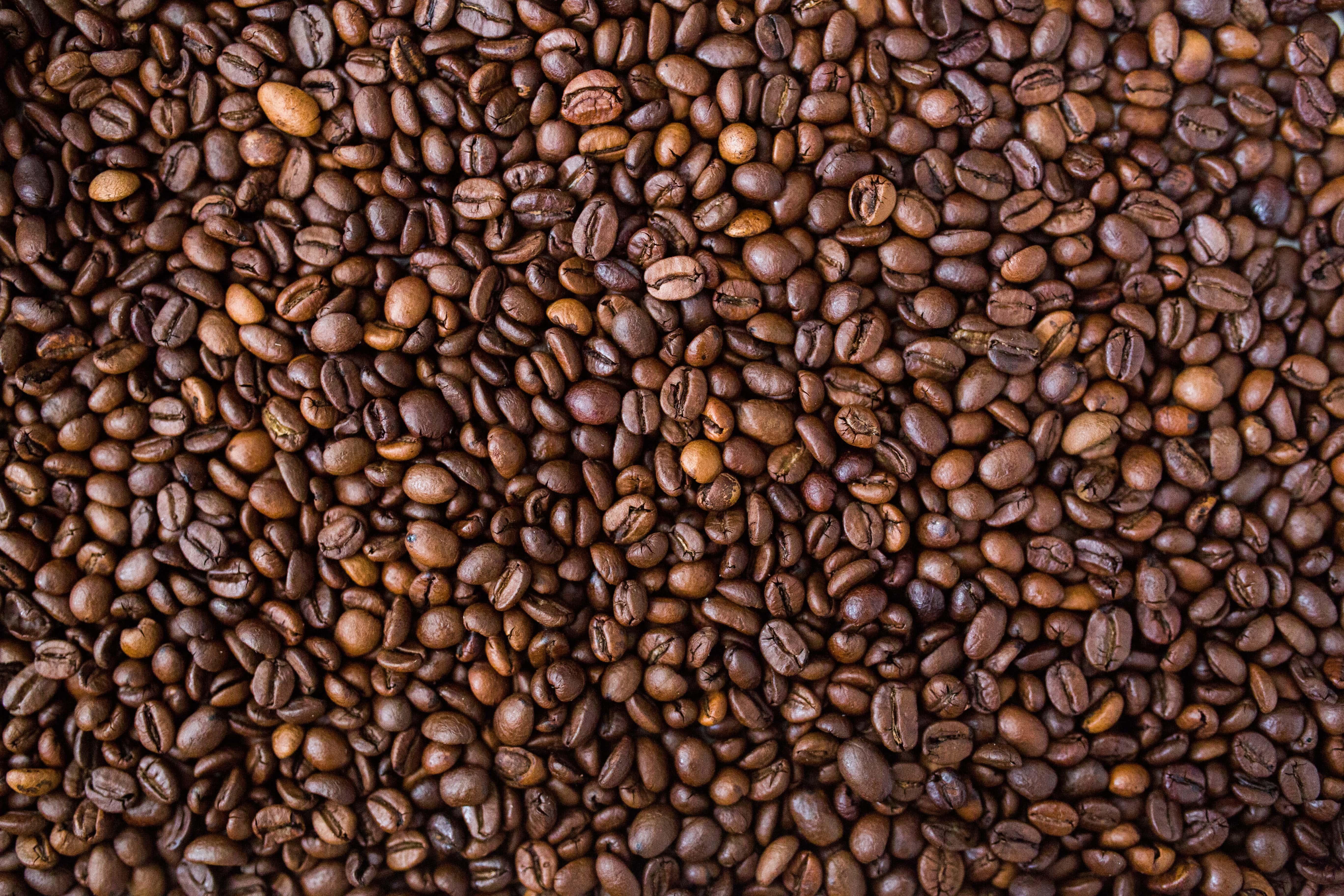 CAFFEINA METABOLISMO E SPORT: CHE EFFETTO HA SUL TUO CORPO?